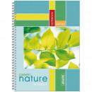 Тетрадь А-4 96 лист Attache Green Nature в клетку на спирали картон.обложка